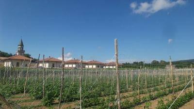 Terramargia 2016, i fagioli del 'Brigante' coltivati dentro le mura della Certosa