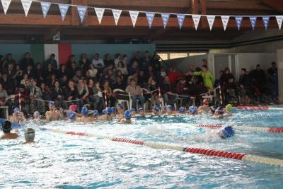 Successo a Serra per il 1° trofeo di nuoto - FOTO E CLASSIFICHE