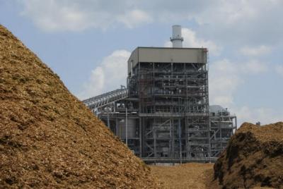 Mongiana, stop del Tar alla centrale a biomassa. Via libera a quella di San Nicola