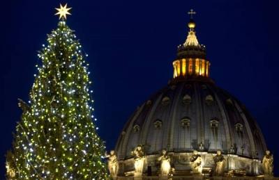 Acceso l'albero di Natale donato dalla Calabria a papa Francesco