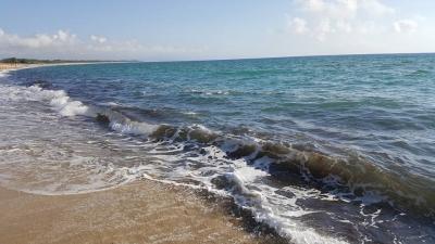 Mare sporco a Nicotera, l'Arpacal: 'Le fioriture algali potrebbero essere tossiche'