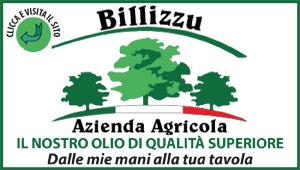 BILLIZZU
