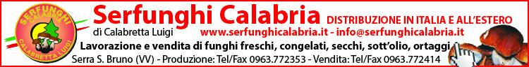 Serfunghi Calabria